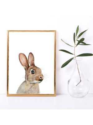 A4 oder A3 Poster Print Wandbild Hase Tierposter Tierbild Geschenk p170
